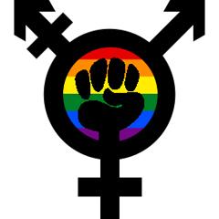 trans-feminist-rainbow-fist_240x240-thumb-240x240-4418